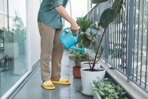 Plants are affordable condo and apartment balcony ideas on a budget.